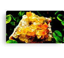 Citrine Cluster Cleansing  Canvas Print