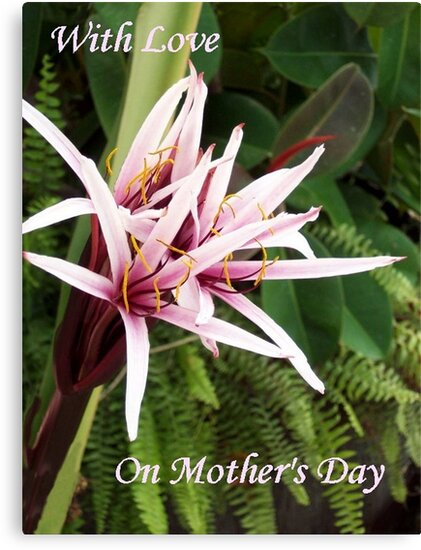 On Mothers Day  by Ginny York