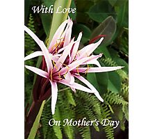 On Mothers Day  Photographic Print