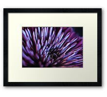 Purple Spiked Flower Framed Print