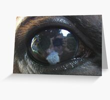 How the horse sees me ... Greeting Card