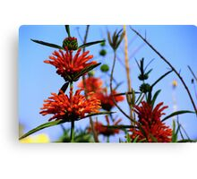 Floral Spike Canvas Print