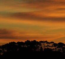 Shadowy Sunrise at World's End by focus2focus