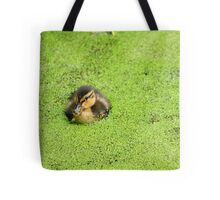 Duckling in Duckweed Tote Bag