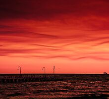 Port Phillip Bay , after the bush fires by mduffus