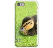 Duckling iPhone Case/Skin