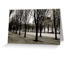 Winter in Paris Greeting Card