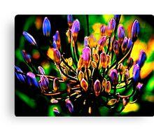 media sorcerer-chakra flower Canvas Print