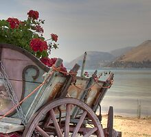 Argostoli Cart by Paul Thompson Photography