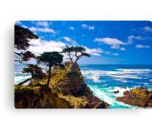 Monterey Lone Cypress Canvas Print