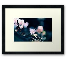 The Dragons Path Framed Print