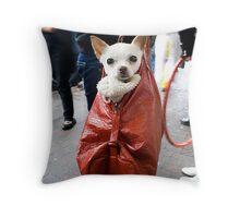 Doggy Bag... Winter Magic Festival 09 Katoomba Throw Pillow