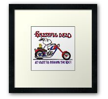 At Least I'm Enjoying the Ride Framed Print
