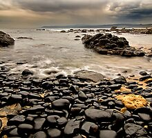 Stony Beach by Hans Kawitzki