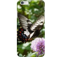 Orchard Swallowtail iPhone Case/Skin