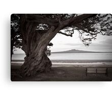 Lone old tree,bench and volcano  Canvas Print