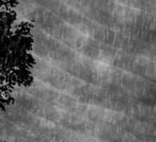 A rainy night in Georgia Sticker
