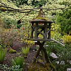Japanese Lantern  by EileenFrith
