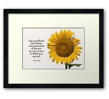Like a sunflower . . . Framed Print