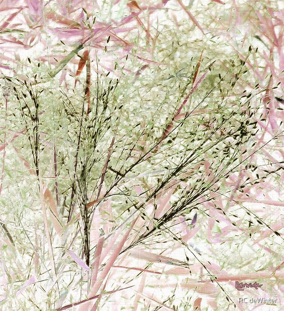 Lawn Morph by RC deWinter