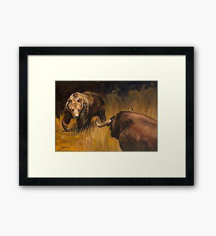 Bear Vs Bull Framed Print
