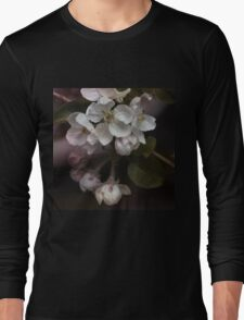 Apple blossoms Long Sleeve T-Shirt