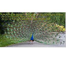Consider the Birds Photographic Print