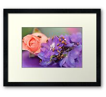 The Lady Bug March  Framed Print
