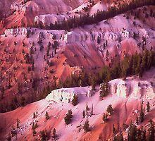 'Cedar Breaks Dusk' by DLUhlinger