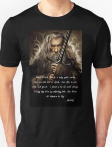 Quotes of Gandalf 2 T-Shirt
