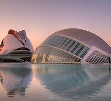 City of Arts and Sciences, Valencia by dlsmith