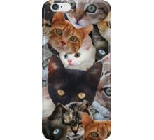 Kitty Collage iPhone Case/Skin