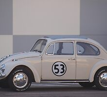 the love bug by dennis wingard