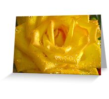 *THE YELLOW ROSE* Greeting Card