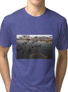 Pigeons Flight in Montreal Suburb. Tri-blend T-Shirt