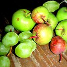 Mom's Mini Apples by Sandy Sparks