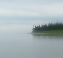 Dense fog at Wadsworth Cove by Patty Gross
