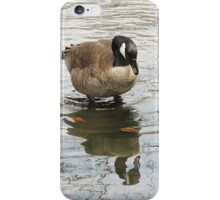 Well Hello, Me! iPhone Case/Skin