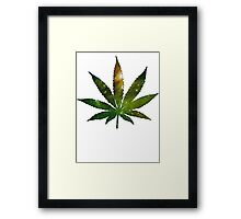 Pot Leaf Framed Print