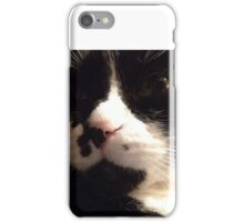 The Purr Starts Here! iPhone Case/Skin