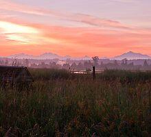 Dawns Glory by Rod Crow