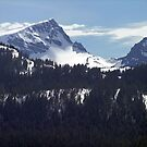 Strathcona Park Mountains by George Cousins