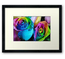 Rainbow Roses 5 Framed Print