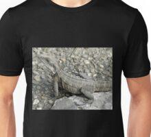 Australian Water Dragon, Chinese Gardens, Darling Harbour, Australia. Unisex T-Shirt
