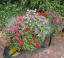 Wheelbarrow of flowers II by Gary Kelly