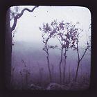 Purple Haze by Jules Campbell