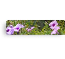 flowers in the wild Canvas Print