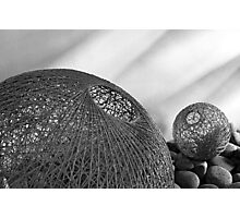 Weaved fishbowl Photographic Print