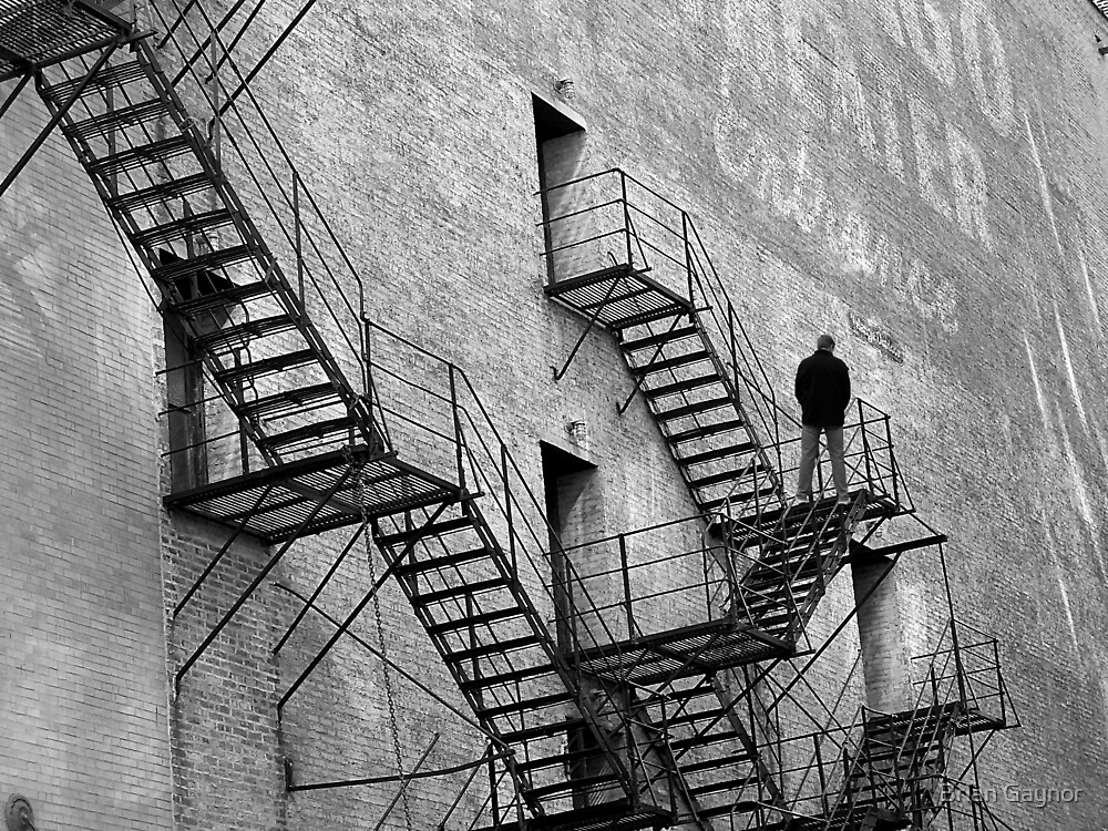The Fire Escape by Brian Gaynor
