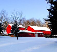 Barn 8_Eden Mill Barns in the Snow by Hope Ledebur